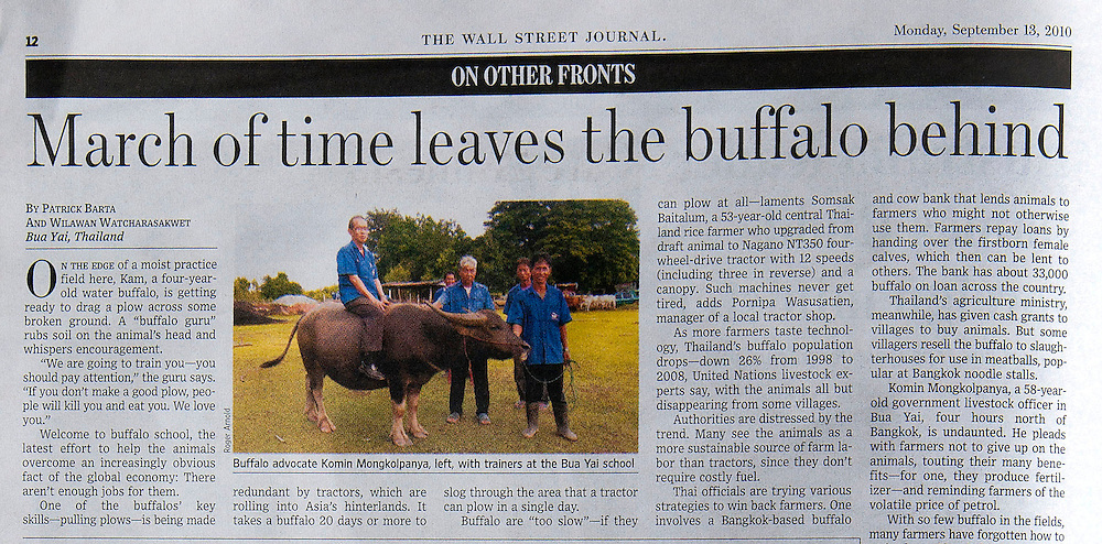 Feautre photo and video for The Wall Street Journal on saving the Asian water buffalo.