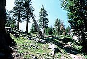 Landscape views of high-altitude landscape near the Minaret Range, Inyo National Forest, Sierra Nevada Mountains, California, USA