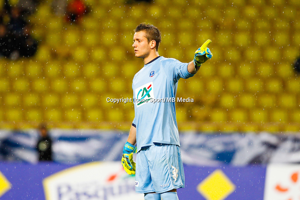 Benjamin Leroy  - 21.01.2015 - Monaco / Evian Thonon   - Coupe de France 2014/2015<br /> Photo : Sebastien Nogier / Icon Sport