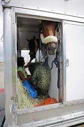 """Vertrek van de paarden naar OG Hong Kong 2008  <br /> KLM - Shiphol 2008<br /> Photo © Dirk Caremans-Hippo Foto<br /> <br /> <br /> <br /> <br /> <br /> <br /> <br /> <br /> <br /> <br /> <br /> <br /> """"""""""""""""""""""""""""""""""""éé""""""""""""""""""""""""""""""""""""""""""""""""""""""""""""""""éééééééééééééééé<br /> <br /> <br /> <br /> <br /> <br /> <br /> <br /> <br /> <br /> <br /> <br /> <br /> <br /> <br /> <br /> <br /> <br /> <br /> <br /> <br /> <br /> <br /> <br /> <br /> <br /> <br /> <br /> <br /> <br /> <br /> <br /> <br /> <br /> <br /> <br /> <br /> <br /> <br /> <br /> <br /> <br /> <br /> <br /> <br /> <br /> <br /> <br /> <br /> <br /> <br /> <br /> <br /> <br /> <br /> <br /> <br /> <br /> <br /> <br /> <br /> <br /> <br /> <br /> <br /> <br /> <br /> <br /> <br /> <br /> <br /> <br /> <br /> <br /> <br /> <br /> <br /> <br /> <br /> <br /> <br /> <br /> <br /> <br /> <br /> <br /> <br /> <br /> <br /> <br /> <br /> <br /> <br /> <br /> <br /> <br /> <br /> <br /> <br /> <br /> <br /> <br /> <br /> <br /> <br /> <br /> <br /> <br /> <br /> <br /> <br /> <br /> <br /> <br /> <br /> <br /> <br /> <br /> <br /> <br /> <br /> <br /> <br /> <br /> <br /> <br /> <br /> <br /> <br /> <br /> <br /> <br /> <br /> <br /> <br /> <br /> <br /> <br /> <br /> <br /> <br /> <br /> <br /> <br /> <br /> <br /> <br /> <br /> <br /> <br /> <br /> <br /> <br /> <br /> <br /> <br /> <br /> <br /> <br /> <br /> <br /> <br /> <br /> <br /> <br /> <br /> <br /> <br /> <br /> <br /> <br /> <br /> <br /> <br /> <br /> <br /> <br /> <br /> <br /> <br /> <br /> <br /> <br /> <br /> <br /> <br /> <br /> <br /> <br /> <br /> <br /> <br /> <br /> <br /> <br /> <br /> <br /> <br /> <br /> <br /> <br /> <br /> <br /> <br /> <br /> <br /> <br /> <br /> <br /> <br /> <br /> <br /> <br /> <br /> Photo © Dirk Caremans - Hippo Foto"""