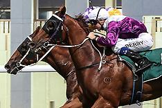 2013 Black Opal Stakes