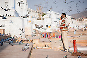 Man talking on the cellphone by Pushkar lake (India)