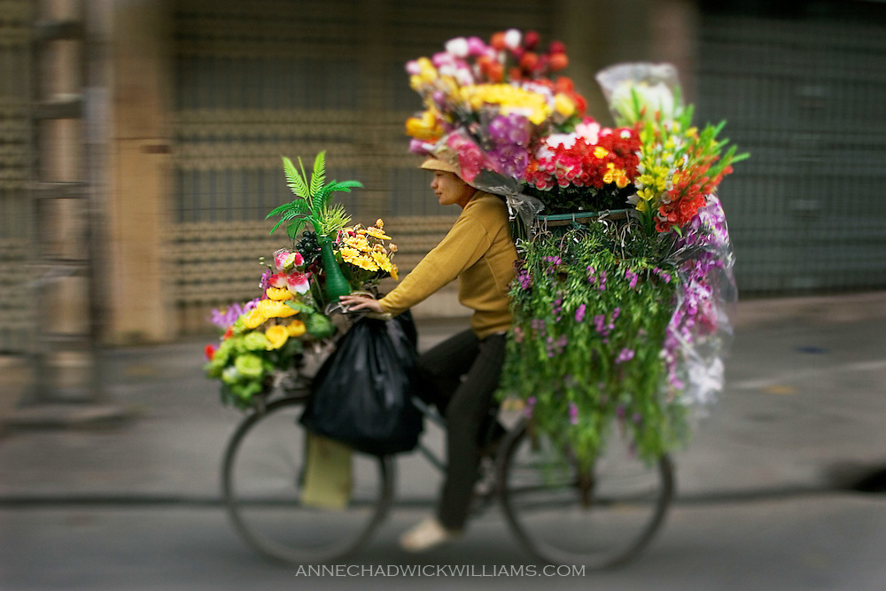 A biker with her cycle loaded with flowers on her way to the flower market peddles in the early morning in Hanoi, Vietnam.