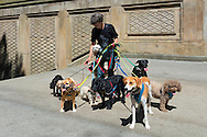 A lady with her pack of dogs on color-coded leashes at Bethesda Terrace in Central Park.