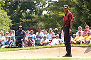 Jul 31, 2005; Grand Blanc, MI, USA; Tiger Woods watches his putt for birdie on the third hole during final round play at the 2005 Buick Open at the Warwick Hills Golf and Country Club. Copyright  2005 Kevin Johnston