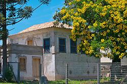 Conhecido também como Solar das Magnólias, foi conhecido em 1877, e possui características da arquitetura colonial portuguesa, trazida pelos colonos açorianos. Em estilo sobrado, na arquitetura do casarão destacam-se o telhado, feito de telha canoa com beiradas, e as janelas em estilo guilhotina. O local será a futura sede da Casa dos Açores do RS.  FOTO: Jefferson Bernardes/Preview.com