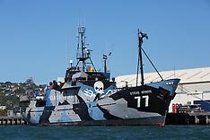 Dunedin-Anti whaling campaign Sea Shepherd's Steve Irwin in port