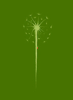 Beautiful dandelion seeds with a little lady bug climbing the stem. Minimalistic abstract oriental Zen style sumi-e painting based design illustration in natural leafy green colors on green background.