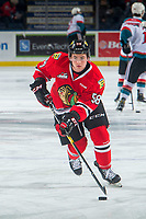 KELOWNA, BC - MARCH 02:  Clay Hanus #58 of the Portland Winterhawks warms up on the ice with the puck against the Kelowna Rockets at Prospera Place on March 2, 2019 in Kelowna, Canada. (Photo by Marissa Baecker/Getty Images)