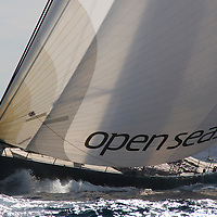 C'est en 1994 que l'aventure Wally débute à Monaco, quand l'homme d'affaires italien Luca Bassani lance son premier voilier haut de gamme, qui se distingue par son design, son luxe et ses aptitudes en course inshore