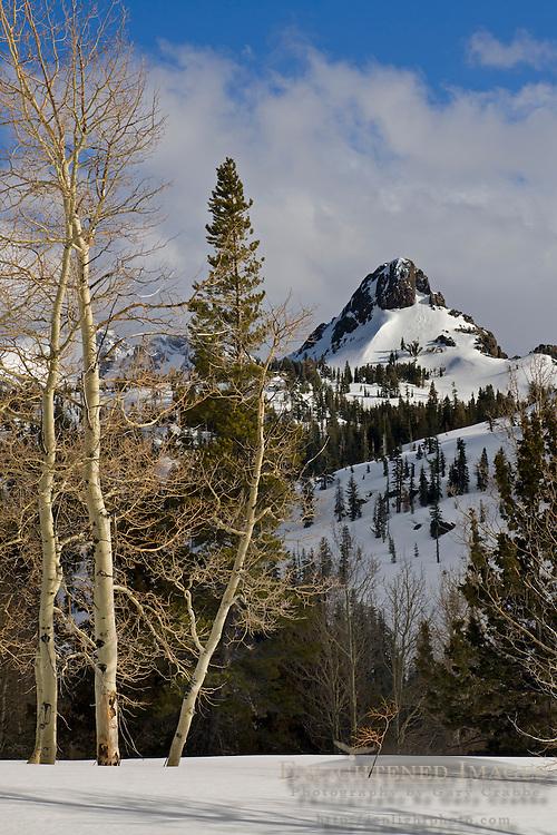 Mountains of the Sierra Nevada in winter near Carson Pass, Alpine County, California