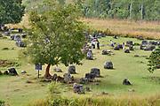 Laos, Xieng Khouang Province. Plain of Jars.  Jar Site 1.