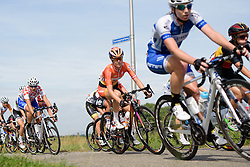 Amalie Dideriksen (Boels Dolmans) at the 111 km Stage 4 of the Boels Ladies Tour 2016 on 2nd September 2016 in 's-Hertogenbosch, Netherlands. (Photo by Sean Robinson/Velofocus).