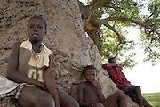 Boys sitting under baobab tree, Ghana.