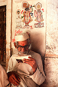 INDIA, RAJASTHAN Krishna wall paintings at a home in Jaisalmer