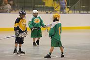 Lacrosse 2011 Allegany Pee Wee @ Newtown