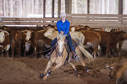 April 29 2017 - Minshall Farm Cutting 1, held at Minshall Farms, Hillsburgh Ontario. The event was put on by the Ontario Cutting Horse Association. Riding in the Ranch Class is Lisa Mayer on Paldur Puff owned by the rider.