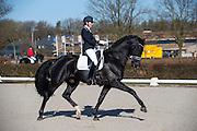 Emmelie Scholtens - Desperado<br /> Selectie WK Jonge Dressuurpaarden 2013<br /> © DigiShots