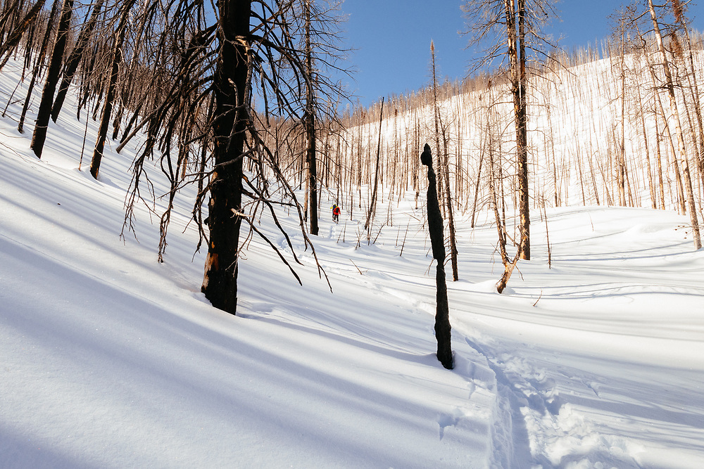 Forrest Jillson and Jim Ryan head into a burned backcountry area of the Tetons.