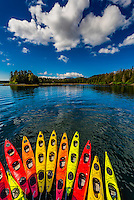 "Row of kayaks, Un-Cruise ""Wilderness Explorer"", Magoun Islands State Marine Park, Krestof Sound, Alaska USA."