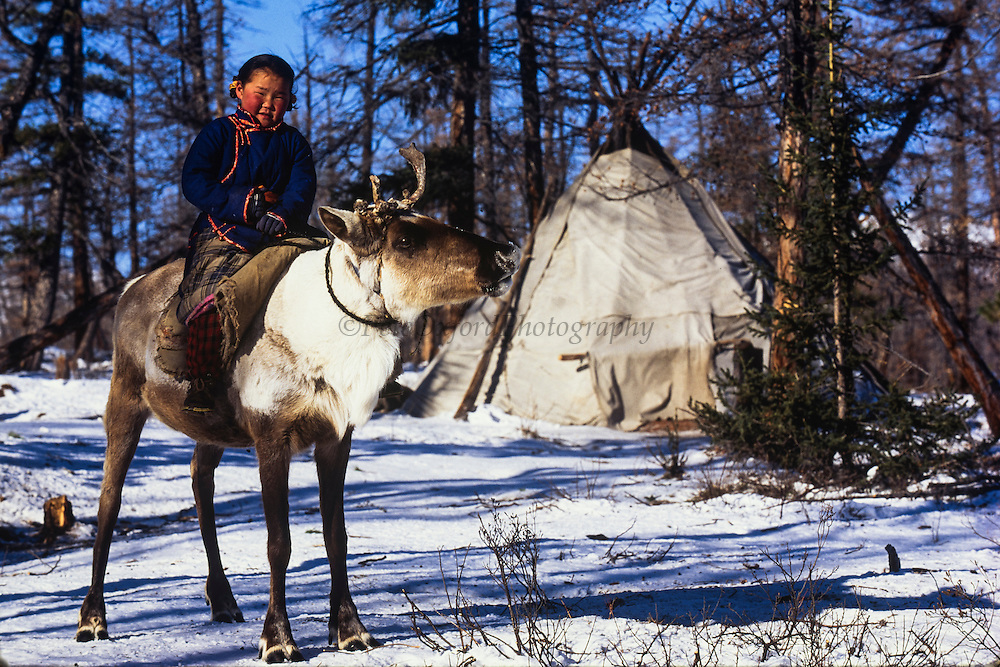 Tsaatan riding reindeer<br /> Nomadic tribe with +-200 individuals left who still live in teepees<br /> Taiga Forest<br /> Northern Mongolia