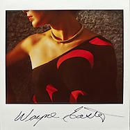 Virgin Gorda. Polaroid Spectra