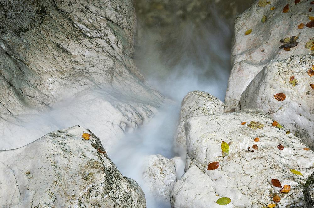 Mountain brook, Valea Prapastiilor, National Park Piatra Craiului, Transylvania, Southern Carpathians, Romania