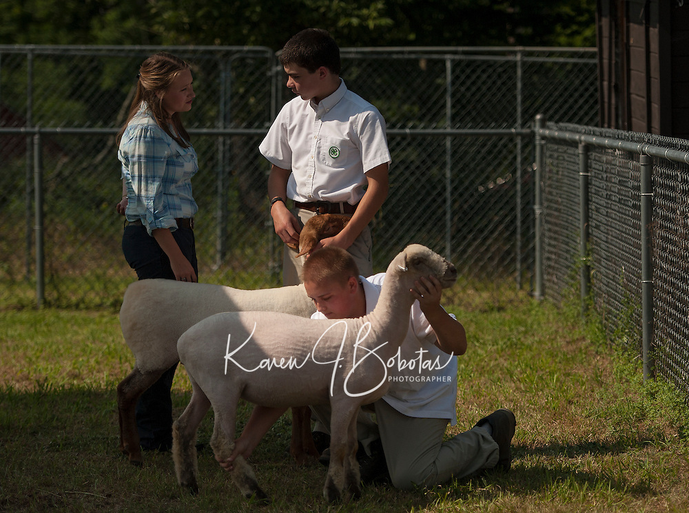 """Amelia Moore judging Joe Garcia with his Tunis """"Mabel"""" during the Sheep Fitting and Show class on Sunday morning at the Belmont Fairgrounds 4H Fair.  (Karen Bobotas/for the Laconia Daily Sun)"""