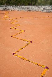 North America, Mexico, Oaxaca Province, Oaxaca, elaborate line of marigold blossoms in courtyard of entho-botanical garden (Jardin Etno-Botanico), part of Iglesia Santo Domingo, during Day of the Dead (Dias de los Muertos)