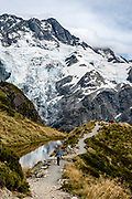 Seen along the Sealy Tarns Track, in Aoraki / Mount Cook National Park, Canterbury region, South Island, New Zealand. In 1990, UNESCO honored Te Wahipounamu - South West New Zealand as a World Heritage Area.