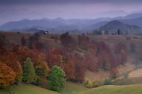 Cultural landscape near Sirnea, Transylvania, Southern Carpathians, Romania