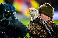 DEVENTER - 13-01-2017, Go Ahead Eagles - AZ,  Stadion Adelaarshorst, 1-3, Adelaar.