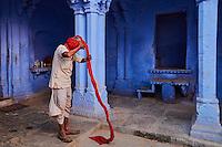Inde, Rajasthan, Jodhpur la ville bleue, l'homme au turban // India, Rajasthan, Jodhpur, the blue city, turban man