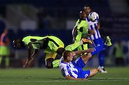 Brighton and Hove Albion v Reading - EFL Cup - Third Round - AMEX Community Stadium