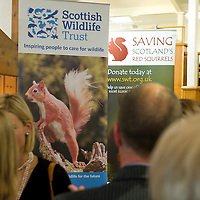 FREE TO USE PHOTOGRAPH....The House of Bruar Helping Scottish Wildlife Trust's Saving Scotland's Red Squirrels Campaign<br /> Picture by Graeme Hart.<br /> Copyright Perthshire Picture Agency<br /> Tel: 01738 623350  Mobile: 07990 594431