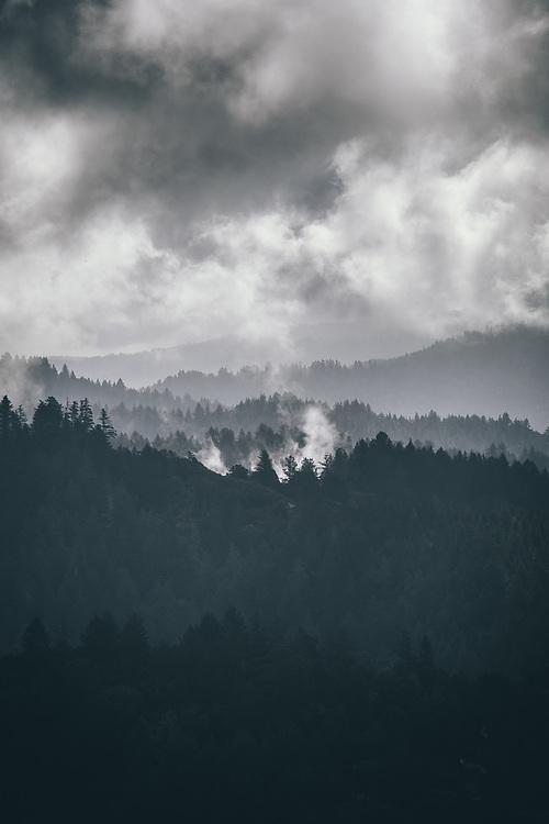 Morning fog over Pescadro, CA