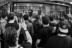 Los Angeles, California, USA - February 25, 2015: Fans watch as Cat Zingano works out at the UFC Gym for her upcoming bout against Ronda Rousey at UFC 184 at the Staples Center in Los Angeles, California.  Ed Mulholland for ESPN