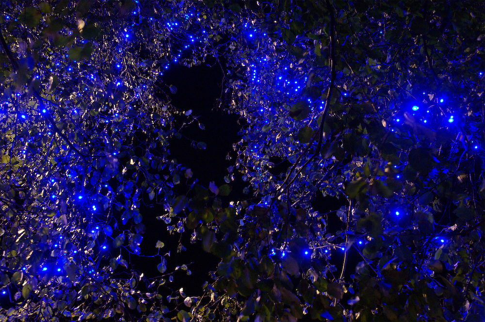 Blue christmas lights on a tree in London