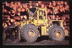 Logging Operations, Port Angeles, Olympic Peninsula, Washington, US