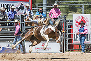 Tanner Burgener rides Summit Pro Rodeo's 92 Indian Style in the bareback riding during the first performance at the Elizabeth Stampede on Saturday, June 2, 2018.