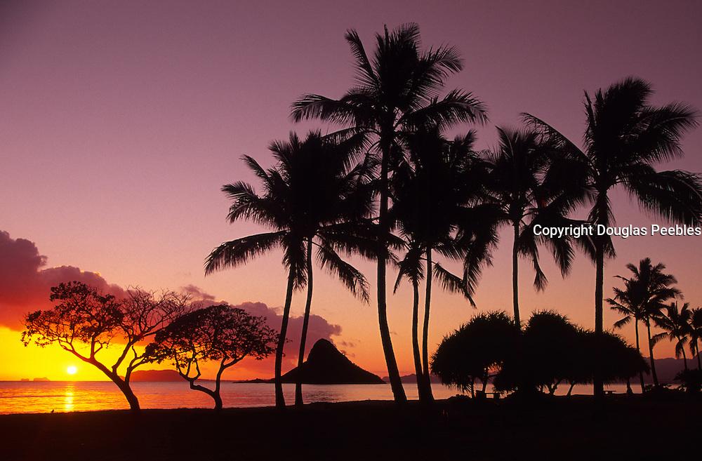 Sunrise, Kualoa Park, Oahu, Hawaii<br />