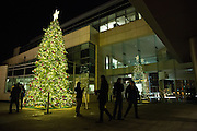 Families admire and take photos with the Milpitas Christmas Tree during the Milpitas Christmas Tree Lighting Ceremony at Milpitas City Hall, in Milpitas, California, on December 1, 2013. (Stan Olszewski/SOSKIphoto)