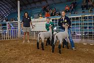 Logan County Fair.