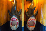 Shark Urinal, Marigalante Pirate Ship Tour, Puerto Vallarta, Jalisco, Mexico