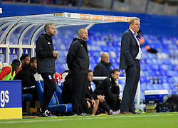 Birmingham City manager Harry Redknapp on the touchline - Mandatory by-line: Paul Roberts/JMP - 08/08/2017 - FOOTBALL - St Andrew's Stadium - Birmingham, England - Birmingham City v Crawley Town - Carabao Cup