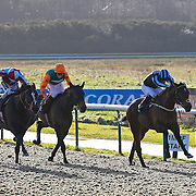Lingfield 13th January