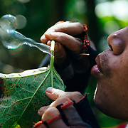 Win Jalawin blows bubbles from plant leaf sap in the higher altitude jungle near Ban Sop Gai, Thailand.