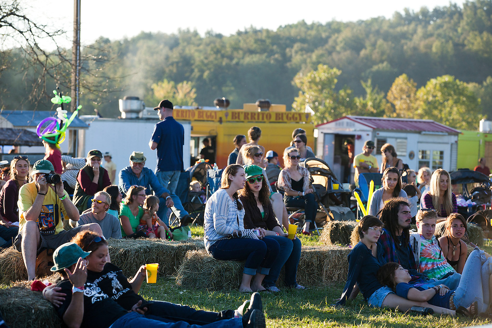 The crowd at the Paw Paw Festival at lake Snowden in Albany, Ohio on September 14, 2013.