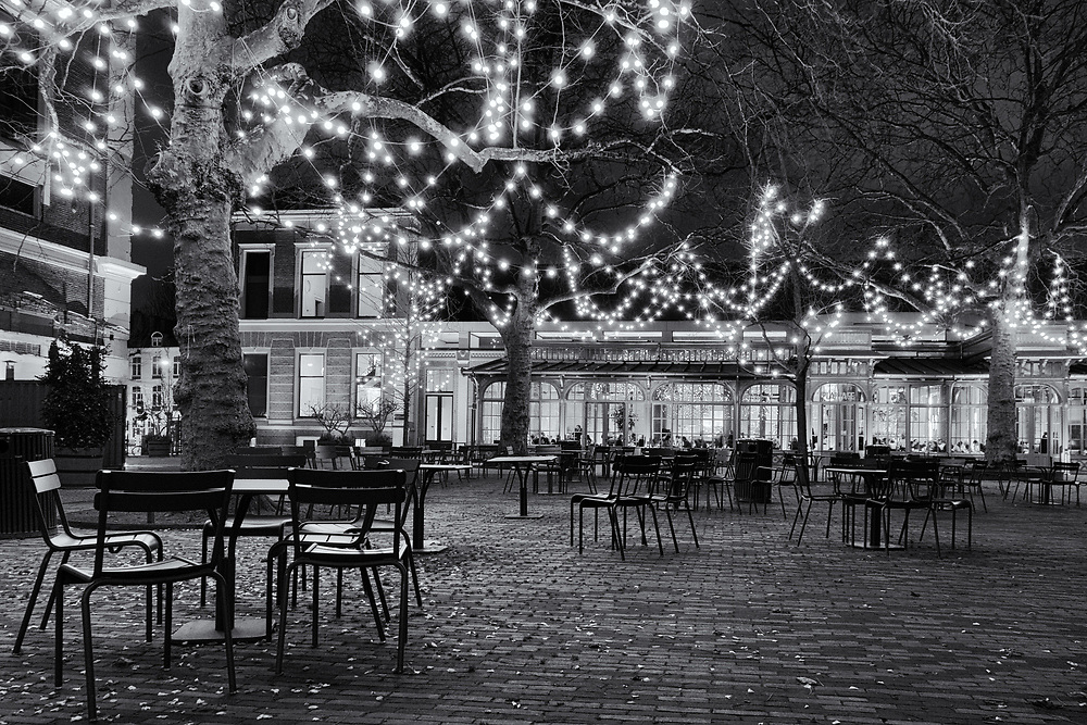 Lights strung from the trees illuminate the Artisplein, Amsterdam.