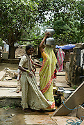 India, Rajasthan Women at the water well